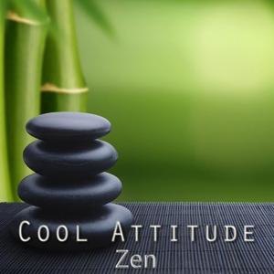 Cool Attitude: Zen