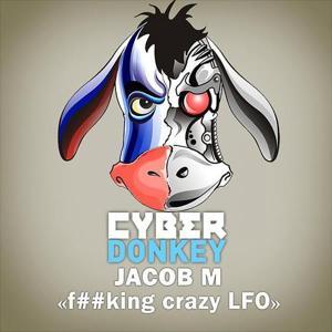 F##king Crazy LFO