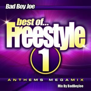 Freestyle Anthems Megamix 1 (Mixed by BadBoyJoe)