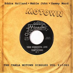 Your Wonderful Love, Vol. 9 (The Tamla Motown Singles)