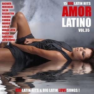 Amor Latino, Vol. 35 - 15 Big Latin Hits & Latin Love Songs (Bachata, Merengue, Salsa, Reggaeton, Kuduro, Mambo, Cumbia, Urbano, Ragga)