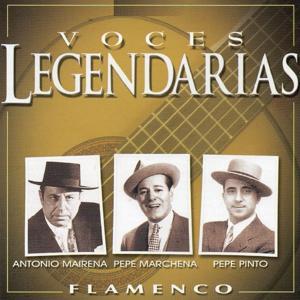 Voces Legendarias (Flamenco)