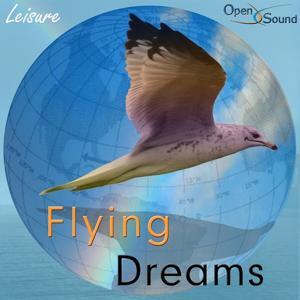 Flying Dreams (Leisure)