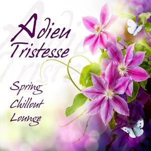 Adieu tristesse (Spring Chillout Lounge)