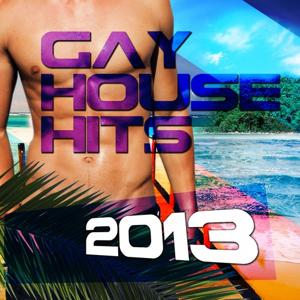 Gay House Hits 2013