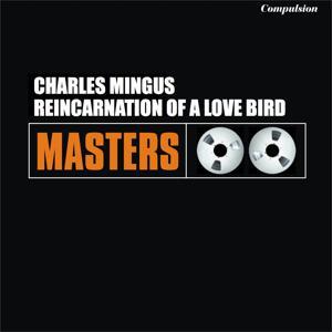 Reincarnation of a Love Bird