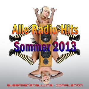 Alle Radio-Hits Sommer 2013 (Zusammenstellung - Compilation)