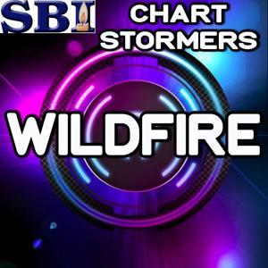 Wildfire - Tribute to John Mayer