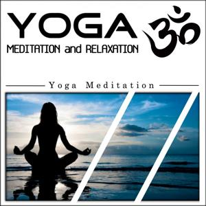 Yoga Meditation and Relaxation: Yoga Meditation (1hour Yoga Therapy for Your Spiritual and Body Healing)