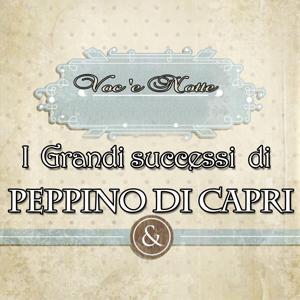 I grandi successi di Peppino di Capri