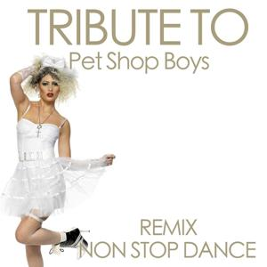 Tribute to Pet Shop Boys (Remix Non Stop Dance)