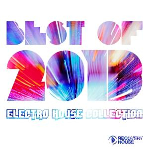 Best of 2013 - Electro House Collection