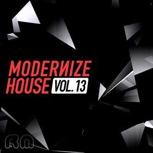 Modernize House, Vol. 13