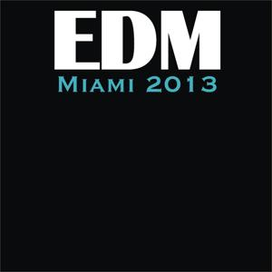 Edm Miami 2013 (Top 40 Hits)