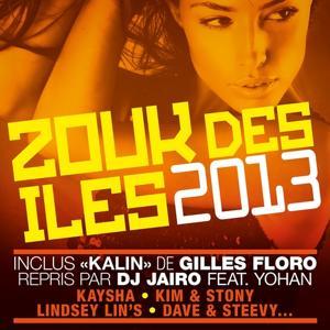 Zouk des iles 2013