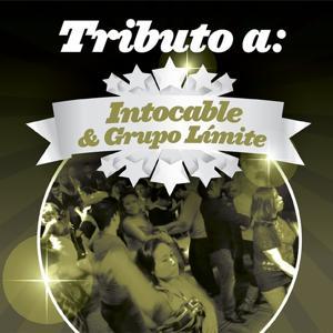 Tributo a Intocable & Grupo Límite