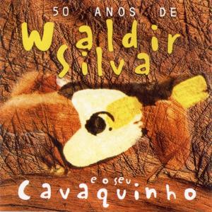 50 Anos de Waldir Silva