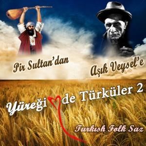 Pir Sultan Abdal'dan Aşık Veysel'e Yüreğimde Türküler, Vol. 2 (Sevda Türküleri Altın Türküler)