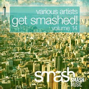 Get Smashed!, Vol. 14