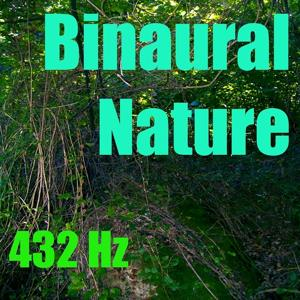 Binaural Nature