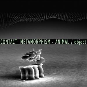 Contact Metamorphism