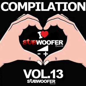 I Love Subwoofer Records Techno Compilation, Vol. 13 (Subwoofer Record)