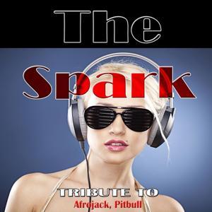 The Spark: Tribute to Afrojack, Pitbull