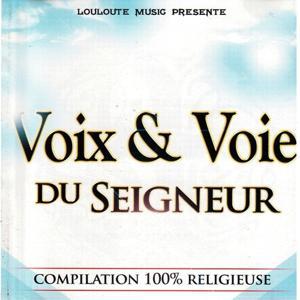 Voix & voie du Seigneur, vol. 1 (Compilation 100% religieuse)