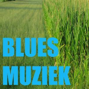 Blues Muziek (Bluesmuziek)