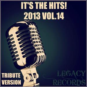 It's the Hits 2013, Vol. 14