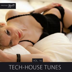 Tech-House Tunes, Vol. 16