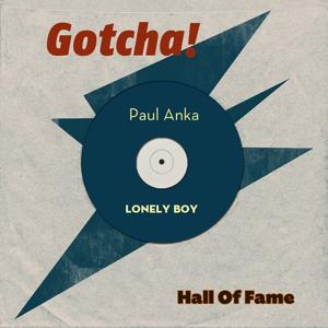 Lonely Boy (Hall of Fame)