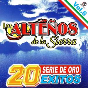 20 Exitos Series De Oro Vol.6