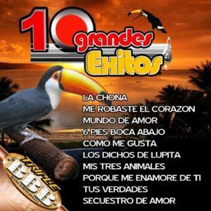 10 Grandes Exitos De Los Tucanes