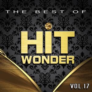 Hit Wonder: The Best Of, Vol. 17