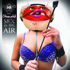 Sex in the Air (Radio Version)