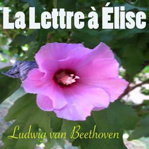 Beethoven: La lettre à Elise, WoO 59 (Piano et environnement naturel Version)