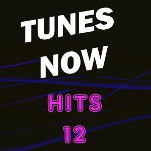 Tunes Now: Hits, Vol. 12