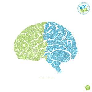 Système limbique