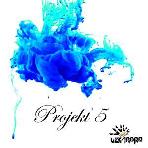 Projekt 5