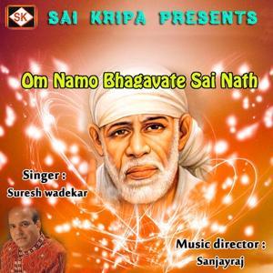 Om Namo Bhagavate Sai Nath