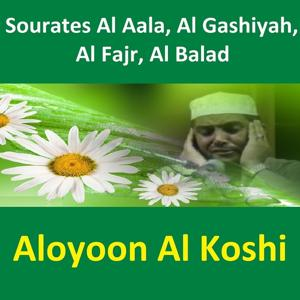 Sourates Al Aala, Al Gashiyah, Al Fajr, Al Balad (Quran - Coran - Islam)