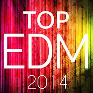 Top EDM 2014