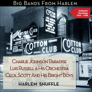 Harlem Shuffle - Big Bands from Harlem (Authentic Recordings 1925 - 1928)