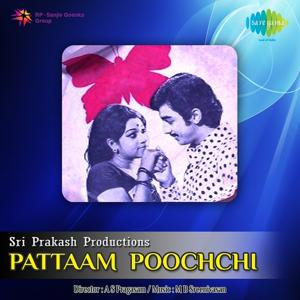 Pattaam Poochchi
