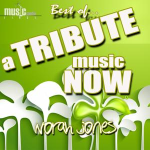 A Tribute Music Now: Best Of... Norah Jones