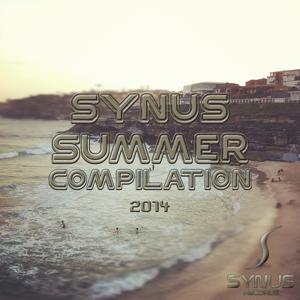 Synus Summer Compilation 2014