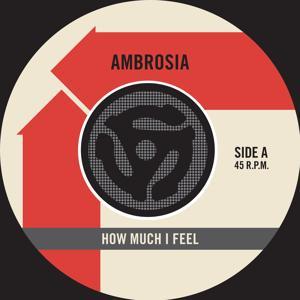How Much I Feel / Ready For Camarillo [Digital 45]