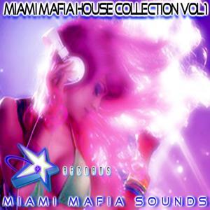Miami Mafia House Collection, Vol. 1