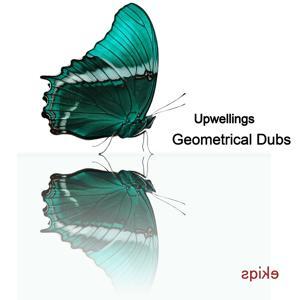 Geometrical Dubs